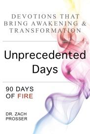 UnprecedentedDaysCover-6x9-img